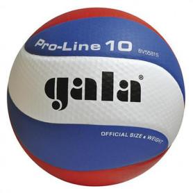 Volejbalový míč GALA Pro Line 5581S
