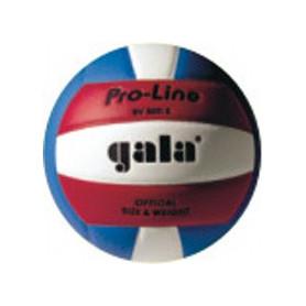 Volejbalový míč GALA Pro-Line Colour BV5011S
